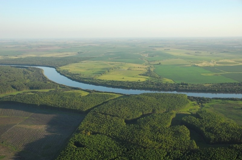 Bird's eye view of Uruguayan countryside