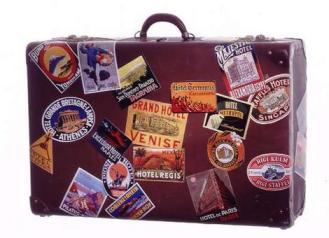 expat suitcase