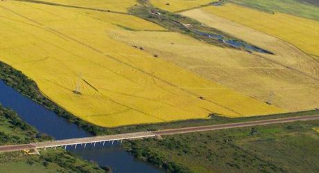 Uruguay: Economy and Trade
